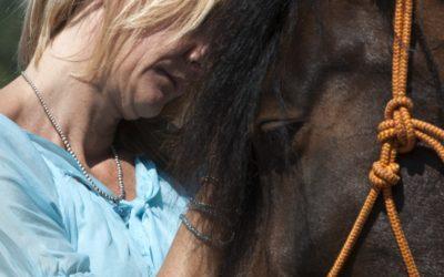 De paarden Spiegelen ook mijn Ziel!
